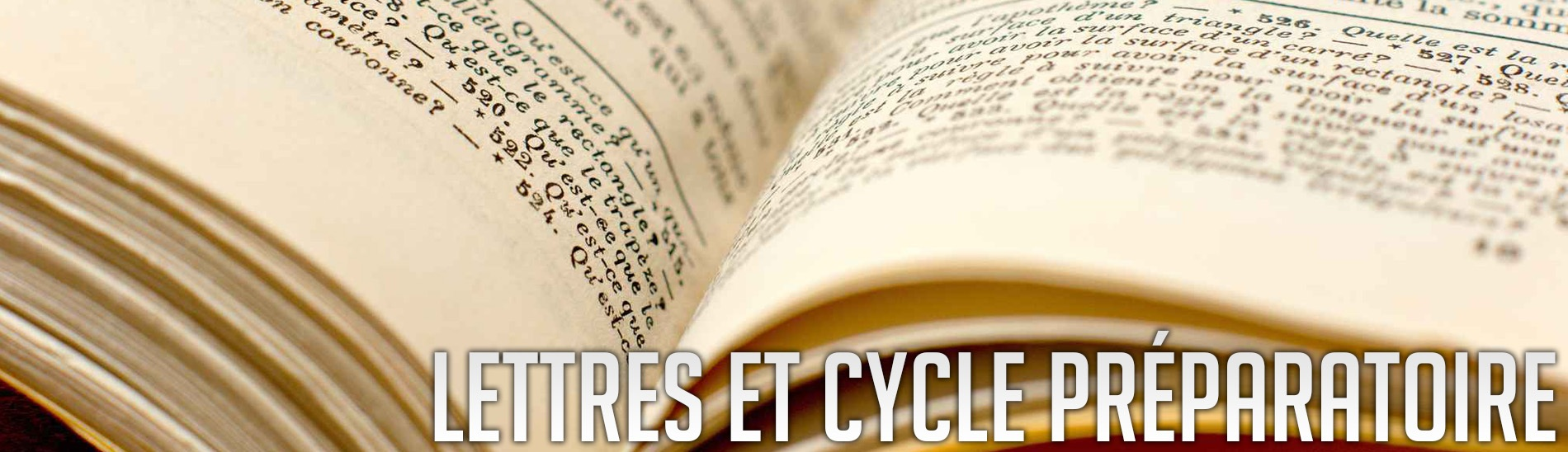 lettres et cycle pr 233 paratoire facult 233 des lettres langues et sciences humaines de mulhouse